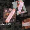 Roma, manifestazione del 10 dicembre 2009 (Video)