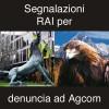 Segnalazioni trasmissioni RAI per denuncia ad Agcom