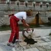 L'Aquila, fontana delle 99 Cannelle, la pulisce Carolina Morace