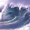 Terremoto di magnitudo 7.8 nel Pacifico. Tsunami al largo della Nuova Zelanda