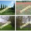 Italia Nostra Abruzzo: il FAI non patrocini la cementificazione della campagna aquilana