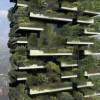 BOSCHI VERTICALI E URBAN FOREST: ECCO LE CITTA' VERDI DEL FUTURO