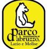 PARCO D'ABRUZZO: TAGLIATI ABUSIVAMENTE SETTEMILA QUINTALI DI LEGNA
