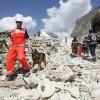TERREMOTO CENTRO ITALIA: COSA NE E' STATO DEI 500MILA EURO DONATI DA FACEBOOK ALLA CROCE ROSSA