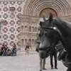 """CARROZZE DI SOLIDARIETA' """"TROTTANO"""" VERSO COLLEMAGGIO (VIDEO)"""