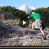 VIDEO: SALVO GRAZIE ALLA CANNABIS, SCALA IL GRAN SASSO