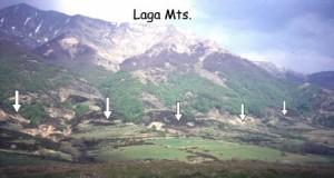 Mti_Laga2