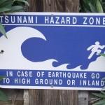 TERREMOTO: LA CALIFORNIA RISCHIA UNO TSUNAMI CON ONDE DI 8 METRI