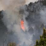 L'AQUILA: INCENDIO PINETA DI ROIO, DANNI PER 800 MILA EURO