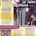 PLUTO JU CANE E GLI ALTRI ANIMALI AQUILANI SU FOCUS WILD