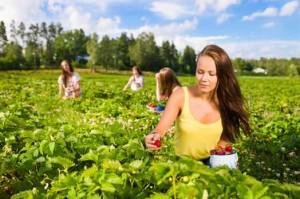 Agricoltura-giovani