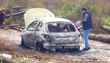 2013-11-11_auto_bruciata