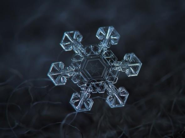 neve-microscopio-16-700x525