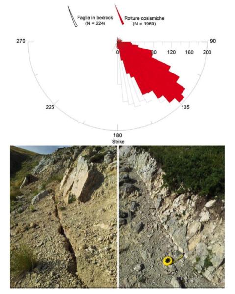 Diagramma a rosa delle direzioni delle rotture cosismiche sui depositi non consolidati (in rosso) e lungo il piano di faglia in roccia del Monte Vettore e del Monte Vettoretto.
