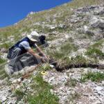 INGV: LA GALLERIA DI FOTO DEGLI EFFETTI GEOLOGICI DEL SISMA DEL 24 AGOSTO 2016