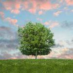 SOSTENIBILITÀ: IL CAMBIAMENTO CLIMATICO PREOCCUPA IL 94% DEGLI ITALIANI
